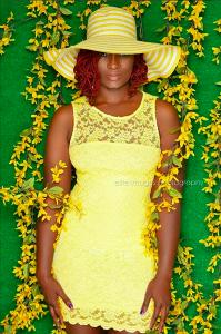 Barbylocs Sunflower - CURLYNUGROWTH.com