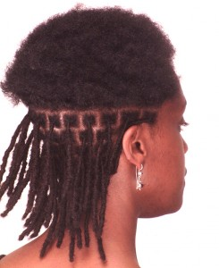 LOC EXTENSIONS - CURLYNUGROWTH.COM